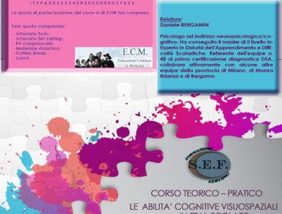 CORSO TEORICO-PRATICO: LE ABILITÀ COGNITIVE VISUOSPAZIALI IN ETÀ SCOLARE   – DR DANIELE BERGAMIN                                               TRASFORMATO IN WEBINAR IN DATA 13-20-21 FEBBRAIO 2021